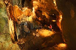 Grotterne Capricorn Caves i Rockhampton