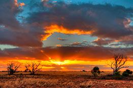 South Australia, Nullarbor plain